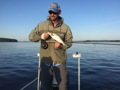 Pictures other fishing guides won 39 t post maine fishing for Obsession fishing charters