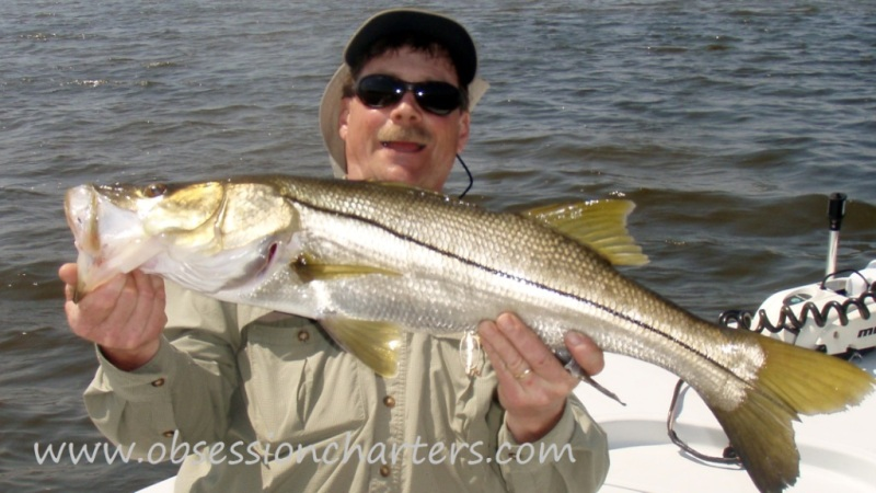 snook169